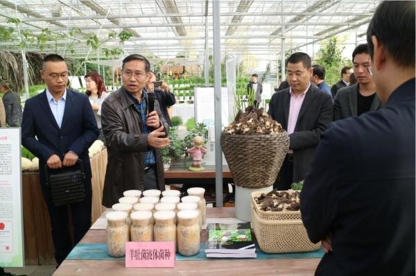 第六届国际农科院院长高层研讨会参会代表参观四川省农业科学院新都基地