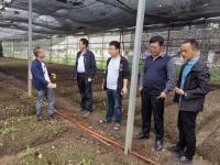 """四川""""科技扶贫万里行""""食用菌28团实地指导甘孜藏区食用菌产业"""