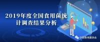 中国食用菌协会发布2019年度全国食用菌产量、产值数据